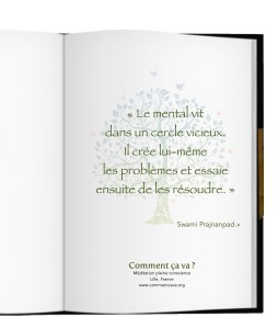 mental-problemes-resoudre-citation-prajnanpad-meditation