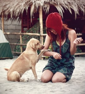 Apprenez à votre chien à bien se comporter en toutes circonstances !