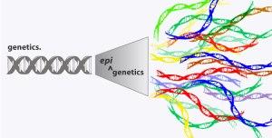 epigenetics_750