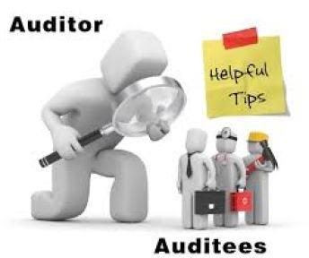 accountant vs auditor