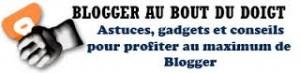 bloggerauboutdesdoigts