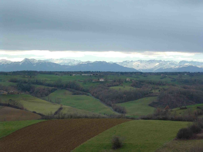 Panorama_2-2.jpg