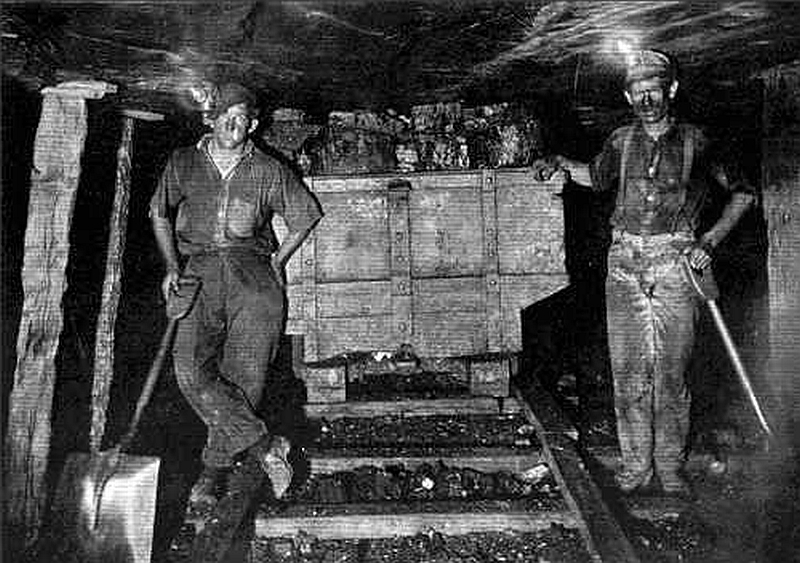 Coal Market basics