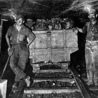 Coal Market: Basic Information