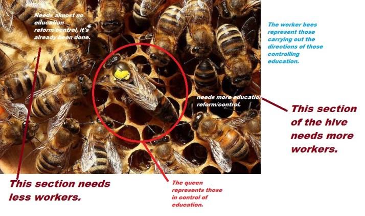 queen-bee-resized