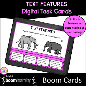Text Features Boom Cards
