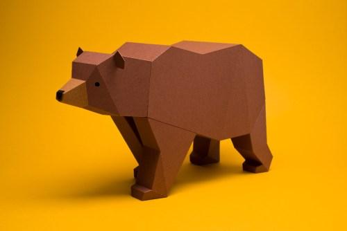 Oso pardo (Ursus arctos) by Estudio Guardabosques
