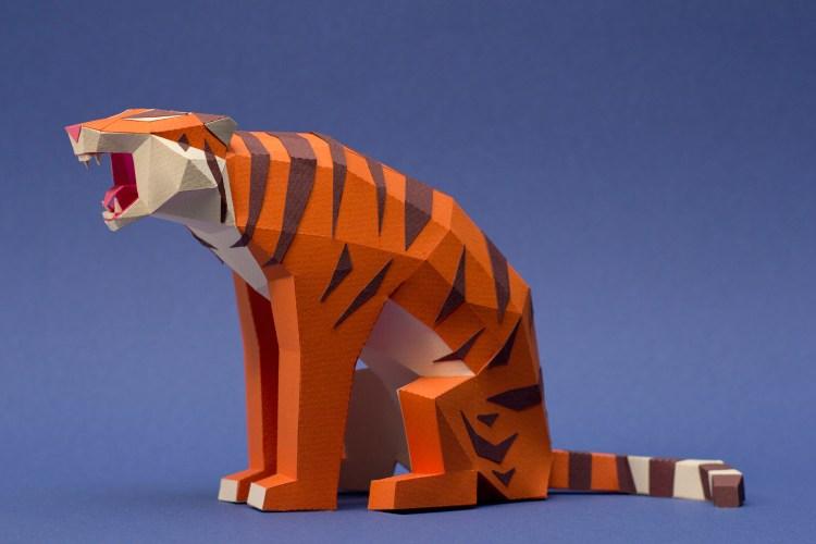 Tigre / Tiger (Panthera tigris) by Esudio Guardabosques