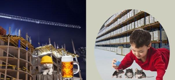 Construction Warehouse Dream