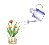 WateringCan2