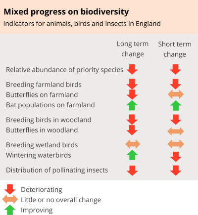 Mixed progress on biodiversity: Indicators for animals, birds and insects in England. Relative abundance of priority species: deteriorating long-term and short-term change. Breeding farmland birds: deteriorating long-term and short-term change. Butterflies on farmland: deteriorating long-term change and little or no overall short-term change. Bat populations on farmland: improving long-term and short-term change. Breeding birds in woodland: deteriorating long-term and short-term change. Butterflies in woodland: deteriorating long-term change and little or no overall short-term change. Breeding wetland birds: little or no overall long-term and short-term change. Wintering waterbirds: improving long-term change and deteriorating short-term change. Distribution of pollinating insects: deteriorating long-term and short-term change.
