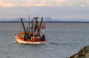 A Scarborough Trawler going fishing at dusk