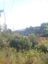 view-of-broncos-stadium