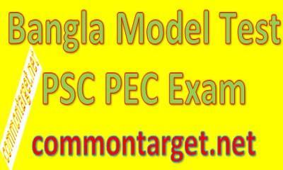 PSC Bangla Model Test 2020