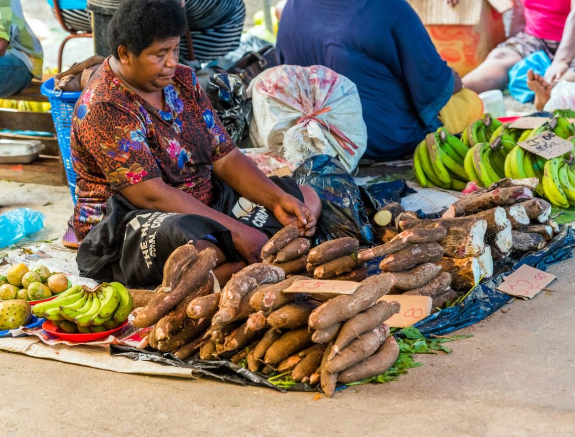 Boost for Fiji Socioeconomy