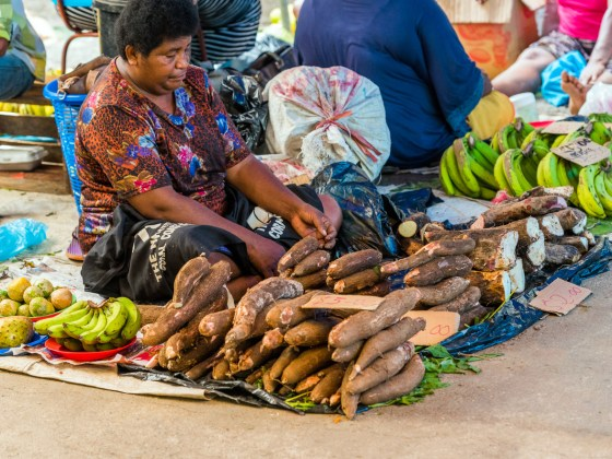 Boost for Fiji Socioeconomy