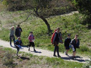 Marche scout nature Eglise verte