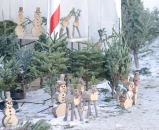 IKEA生モミの木クリスマスツリーの返却の仕方と回収期間は?