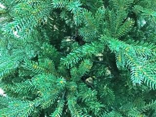 クリスマスツリーIKEA生のモミの木の選び方や配送は?電車での持ち帰り方
