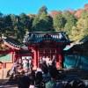 箱根神社の初詣の混雑や参拝時間に参拝ルート 花火に屋台のまとめ