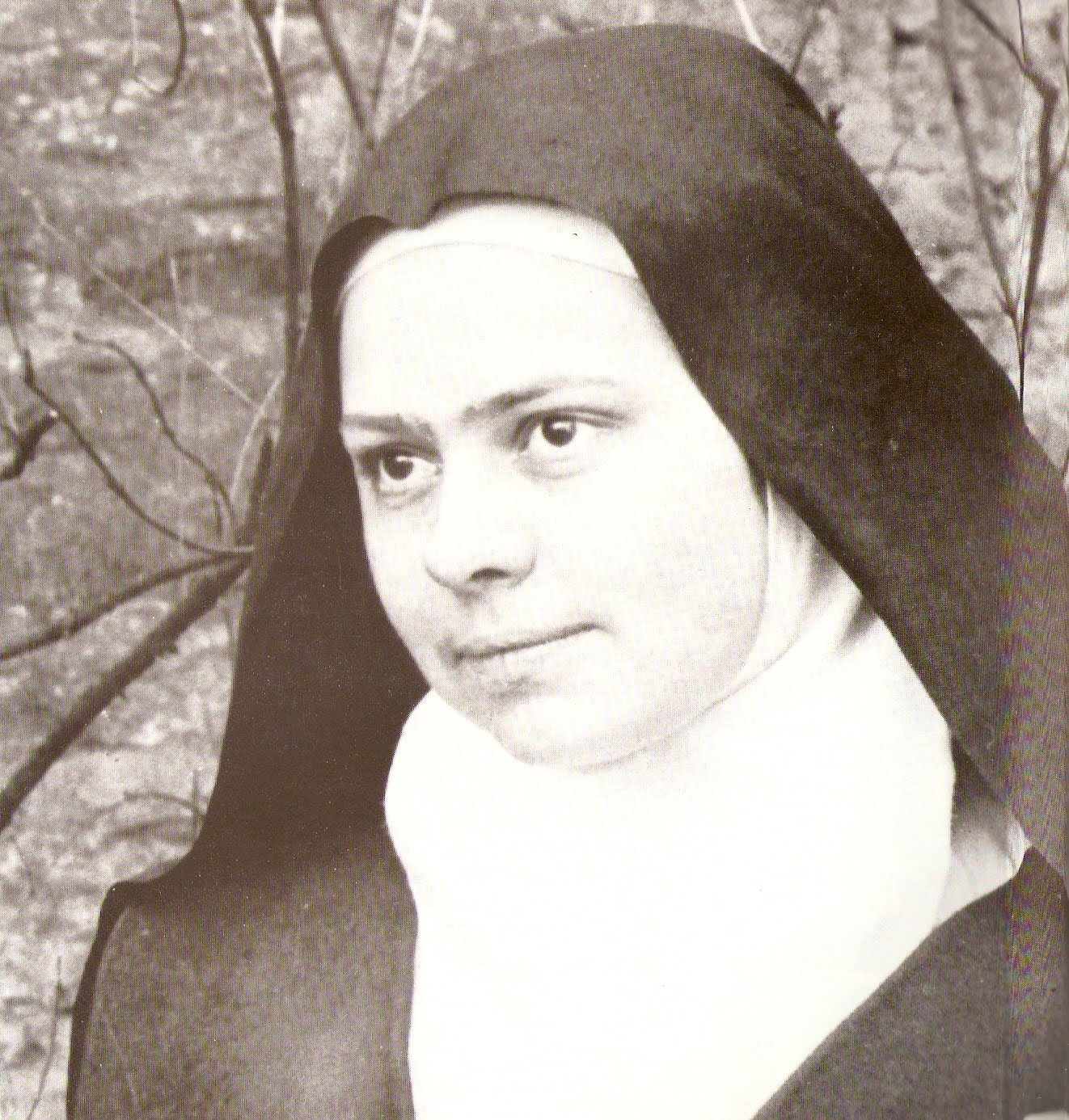 Canonization of Bl Elizabeth of the Trinity 16th Oct 2016