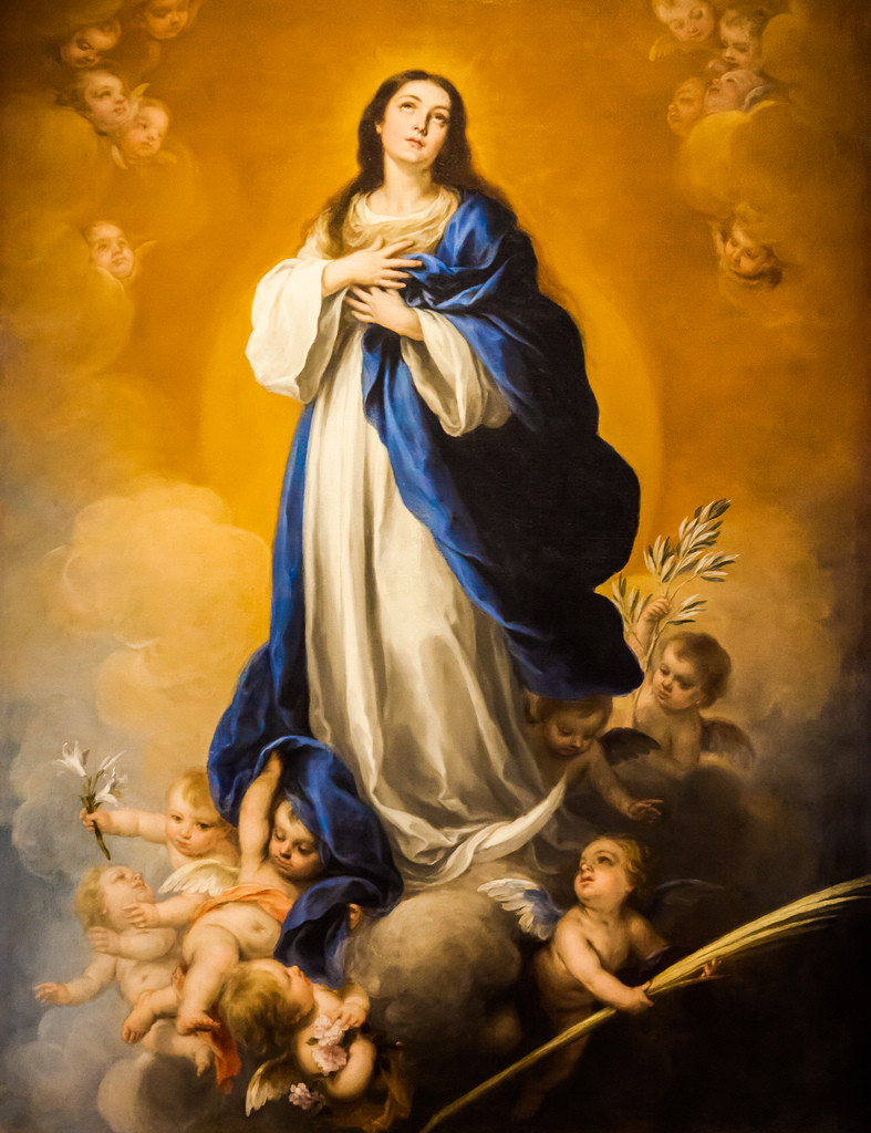 Immaculate Conception | Communio