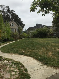 intentional community, intentional living, cohousing