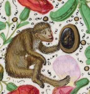 Detail from a full border of a monkey looking at itself in a mirror, from the Isabella Breviary, Southern Netherlands (Bruges), late 1480s and before 1497, British Library, Additional 18851, f. 270. See more at: http://britishlibrary.typepad.co.uk/digitisedmanuscripts/2012/04/monkeys-in-the-margins.html#sthash.4h3ieMBc.dpuf.http://britishlibrary.typepad.co.uk