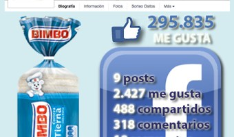 infografia bimbo Facebook community internet the social media company