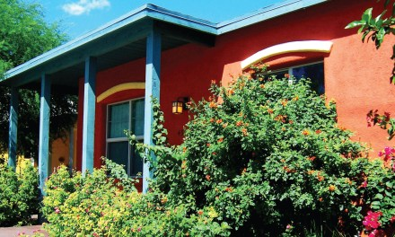 Building a Greener, More Beautiful Tucson