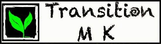 transitionmk_logo_green