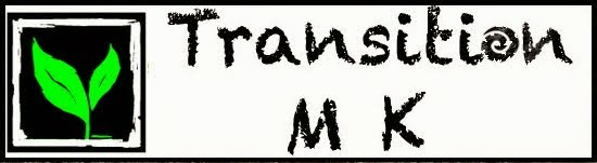 transitionmk_logo_green-1