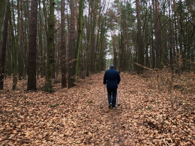 Older Man in The Forest