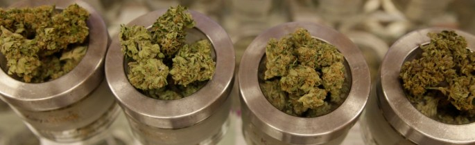 In this Friday, June 26, 2015 photo, different varieties of marijuana flowers are displayed at medical marijuana dispensary Kaya Shack in Portland, Ore. On July 1, recreational marijuana in Oregon is legal, but it's likely customers won't be able to buy the pot at medical dispensaries until October 1. (AP Photo/Gosia Wozniacka)