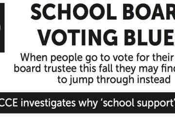 School board voting blues
