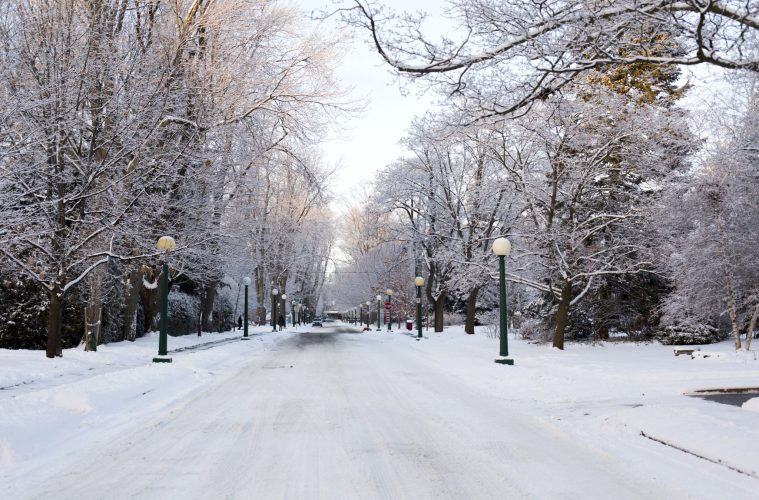 Easy Being Green: Living Sustainably in the Winter Months
