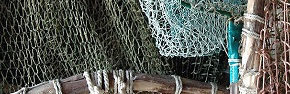Fishing nets hanging