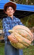 chris-pumpkin