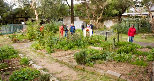 Tour visitors at Glebe Community Garden in the church grounds.