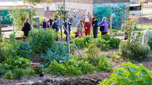 One of the City of Sydney tours visites the Marrickville West Community Garden, situated in a school grounds.
