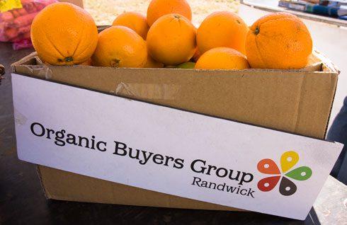 organic_buyers-2