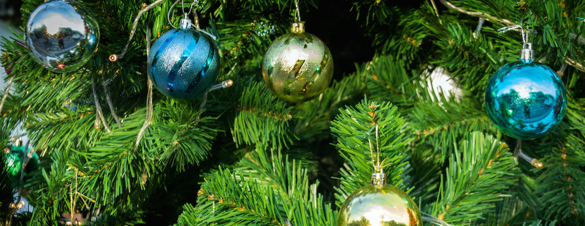 From Christmas tree recycling to a party at Wolf Ranch Town Center, there is plenty happening in Georgetown this week.