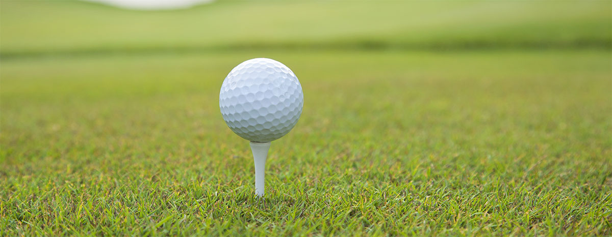 Developer to build on Sunmeadow golf course