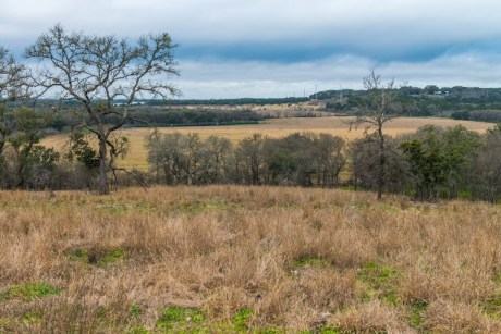 The San Marcos River Foundation announced Tuesday it has reached a conservation easement agreement with the owners of the 211-acre Dreamcatcher Ranch.