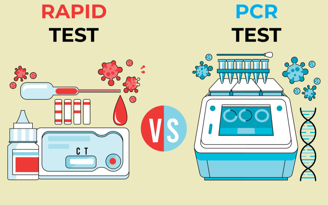 What is the Difference between a COVID-19 PCR Test and a Rapid Antigen Test?