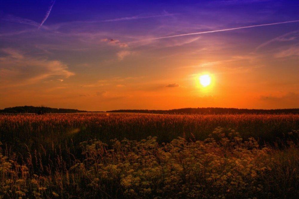 Pixabay https://pixabay.com/fr/%C3%A9t%C3%A9-sunset-projet-de-loi-nature-789974/