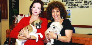 Two volunteers combine for 15K hours at Humane Society
