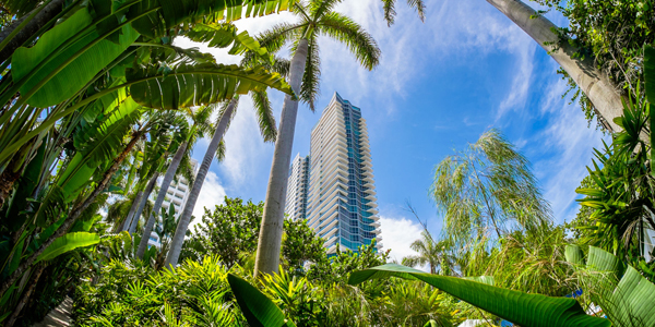 miami-named-americas-fifth-greenest-city