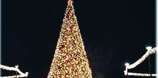 Get into the holiday spirit at Bayfront Park's tree lighting