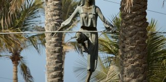 Jerzy Kedziora presents 'The Art of Balance' at Fairchild Garden